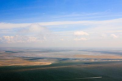 Low tide - p1120m925628 by Siebe Swart