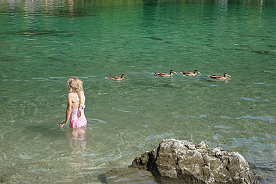 A young girl swims in a lake in the middle of a duck family - p1610m2204913 by myriam tirler