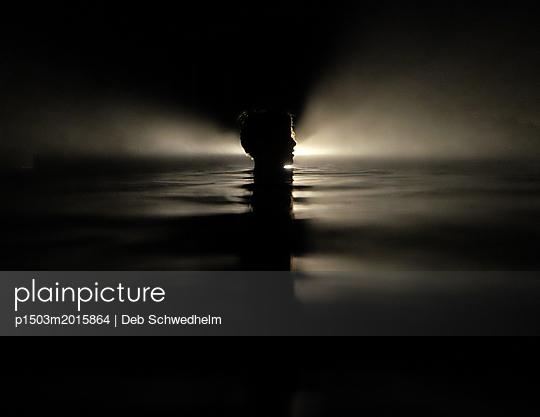 Boy in Dark Water - p1503m2015864 by Deb Schwedhelm