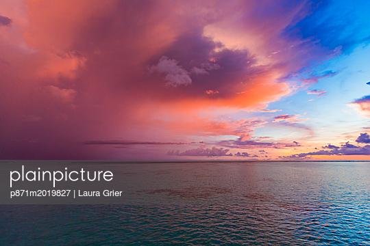 p871m2019827 von Laura Grier