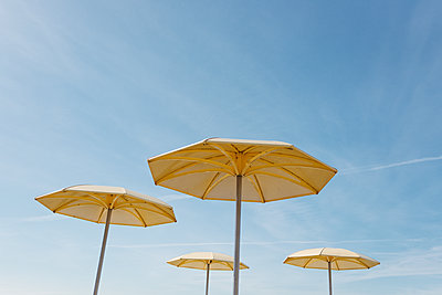 Yellow Umbrellas - p1335m1171609 by Daniel Cullen