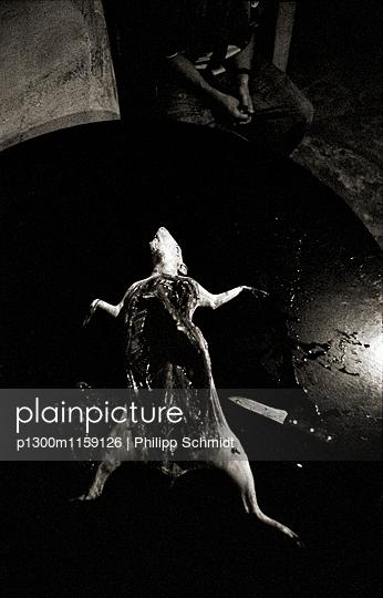 Nach der Jagd - p1300m1159126 von Philipp Schmidt