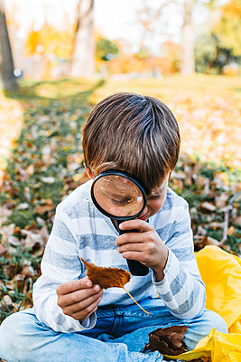 Little boy exploring autumn leaf with magnifying glass in nature - p300m2058822 von Epiximages