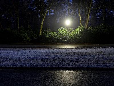 Nachts im Park - p536m1223178 von Schiesswohl