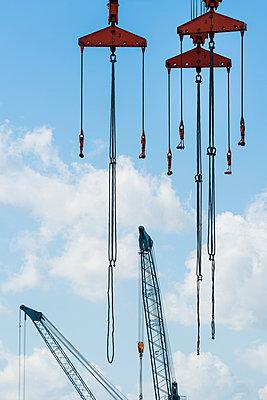 Cranes - p488m1031051 by Bias