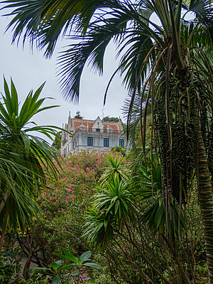Portugal, Madeira, Monte Castle - p1600m2175617 by Ole Spata