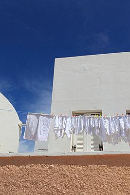 Frisch gewaschen - p0452262 von Jasmin Sander