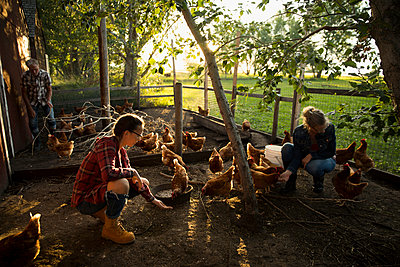 Mother and daughter farmers feeding chickens in chicken coop - p1192m1493194 by Hero Images