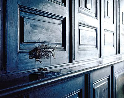 Naturhistorisches Museum - p1205m1065983 von Klaus Pichler