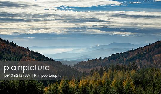 Mountain landscape with coniferous forest - p910m2127864 by Philippe Lesprit