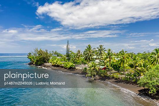 Polynesia, Tahiti south peninsula with palm trees - p1487m2245026 by Ludovic Mornand