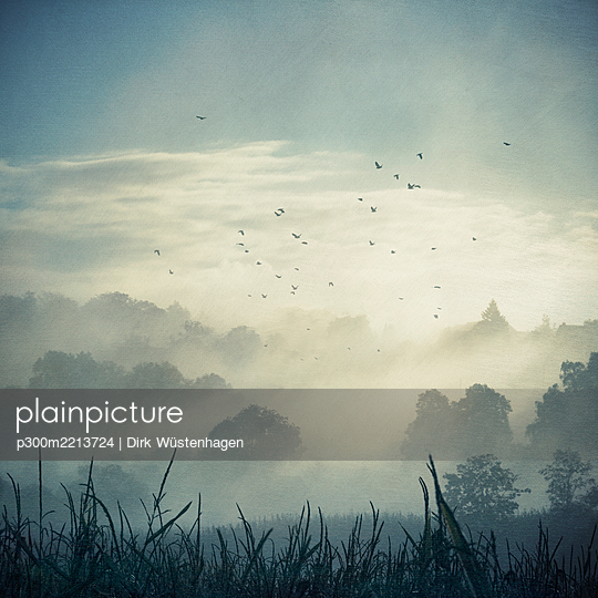 Misty landscape at backlight, composite - p300m2213724 by Dirk Wüstenhagen