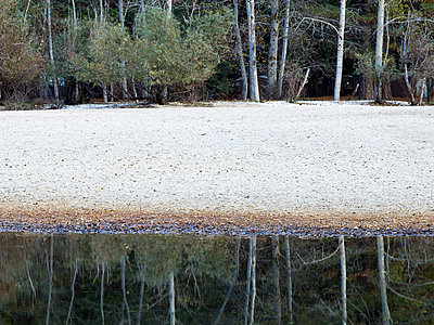 Trees and sandy beach reflecting in still river - p555m1411809 by Jeffrey Davis
