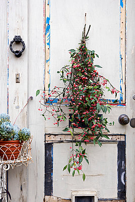 Autumn wreath on weathered doorway of Isle of Wight home;  UK - p349m920036 by Rachel Whiting