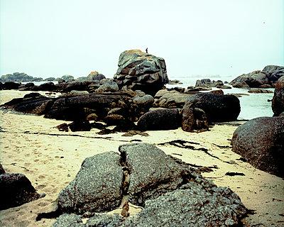 Mensch auf einem Felsen am Meer - p567m1530404 von Gaëlle Magder