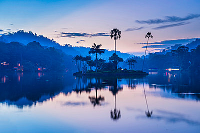 Kandy Lake and the island which houses the Royal Summer House at dawn, Kandy, Central Province, Sri Lanka, Asia - p871m837856 by Matthew Williams-Ellis