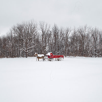 Snow covered horse-drawn carriage in a clearing - p1542m2142340 by Roger Grasas