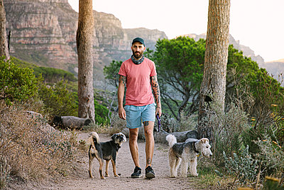 South Africa, Man with two dogs on a path - p1640m2246182 by Holly & John