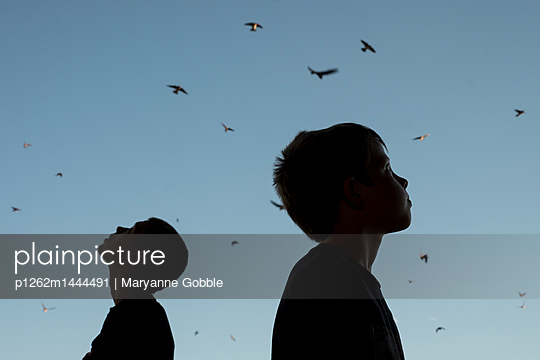 Silhouette of Birds and Boys - p1262m1444491 by Maryanne Gobble