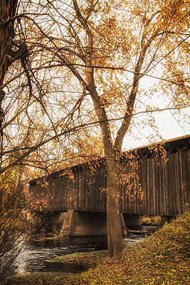 Covered Bridge in Fall - p1331m1203336 by Margie Hurwich