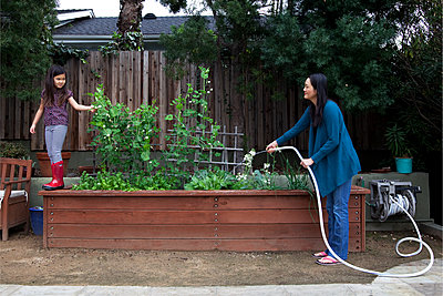 Mother and daughter gardening in backyard - p555m1409265 by Shestock