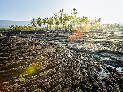 Volcanic rocks and trees at Puuhonua O Honaunau National Historical Park against sky - p300m2131775 by Christian Vorhofer