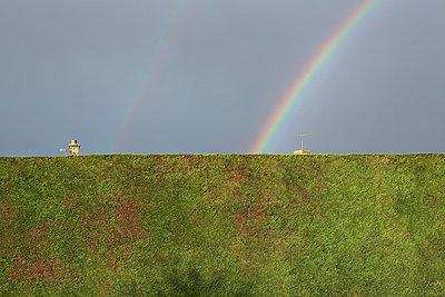 Schronstein und Regenbogen hinter der Hecke - p1057m881350 von Stephen Shepherd