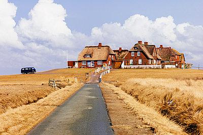 Wohnsiedlung auf Warft - p1085m880902 von David Carreno Hansen