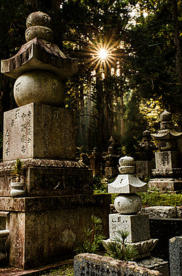Japanese graveyard at Koyasan - p1180m965877 by chillagano