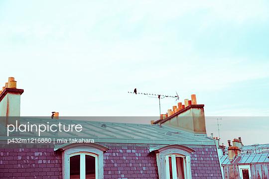 Über den Dächern von Paris - p432m1216880 von mia takahara