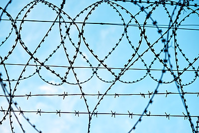 Barbed wire against blue sky - p1630m2277780 by Sergey Mironov
