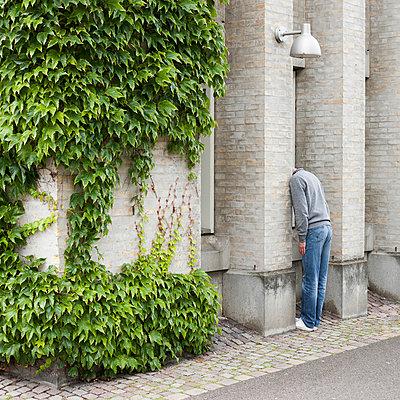 Versteck in Mauer - p1078m1050884 von Frauke Thielking