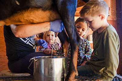 Children looking at farmer milking goat at farm - p1166m2000564 by Cavan Images