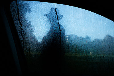 Silhouette of man behind car window - p1411m2057734 by Florent Drillon