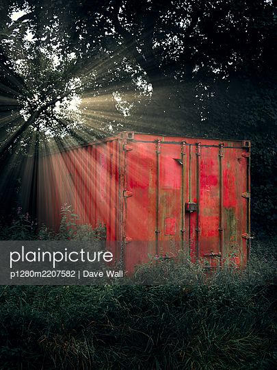 Red cargo container in the forest - p1280m2207582 by Dave Wall