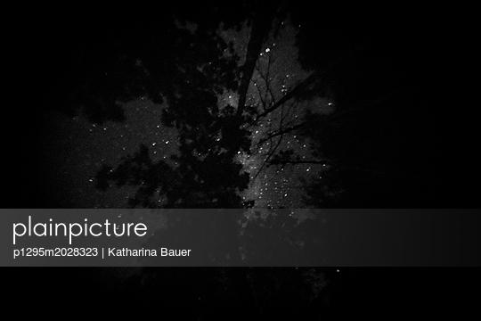 Nachthimmel - p1295m2028323 von Katharina Bauer