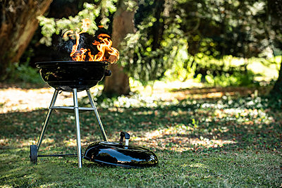 Barbecue grill in garden - p623m2294752 by Eric Audras