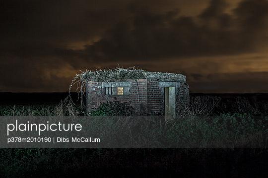 p378m2010190 von Dibs McCallum
