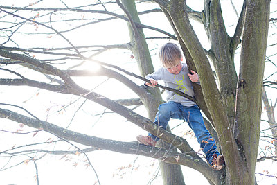 Kind klettert auf Baum - p1308m1332366 von felice douglas