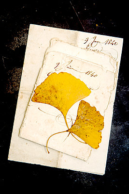 Alte Briefe - p451m937781 von Anja Weber-Decker