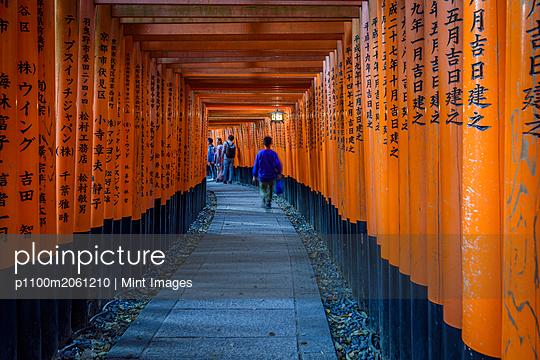 p1100m2061210 von Mint Images