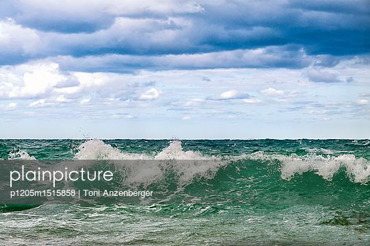 p1205m1515858 by Toni Anzenberger