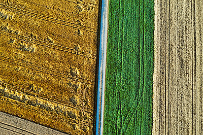 Drone photography of arable land - p1312m2103832 by Axel Killian