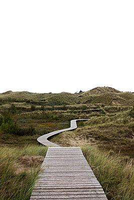 Holzweg auf Amrum - p341m1488297 von Mikesch