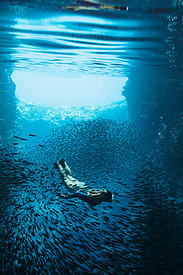 Young woman snorkeling underwater among schools of fish, Vava'u, Tonga, Pacific Ocean - p1023m2024440 by Martin Barraud