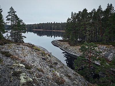 p312m1228838 von Stefan Isaksson