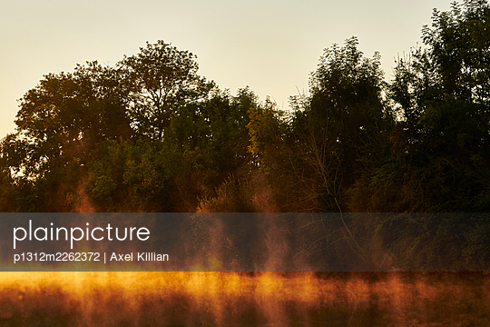 Trees and channel at sunset - p1312m2262372 by Axel Killian