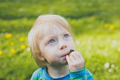 Portrait of blond toddler girl on a meadow looking up - p300m2160149 von Irina Heß
