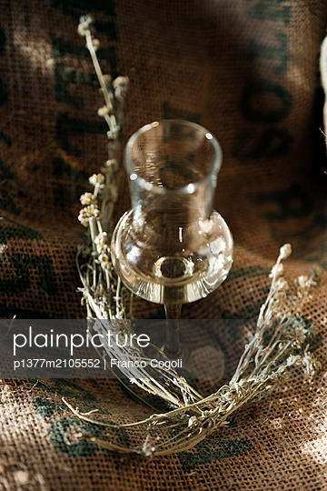 Italy, Aosta Valley, Aosta district, Hône, Distilleria Alpe (distillery) - Glass of genepy Herbetet - p1377m2105552 by Franco Cogoli