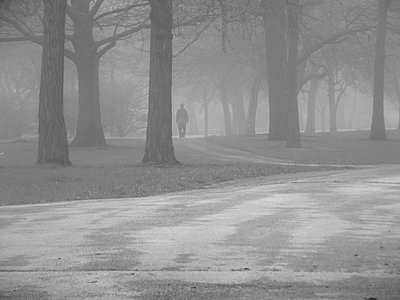 Man Walking Alone In Foggy Forest - p1166m2136547 by Cavan Images